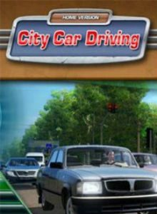 city-car-driving-1